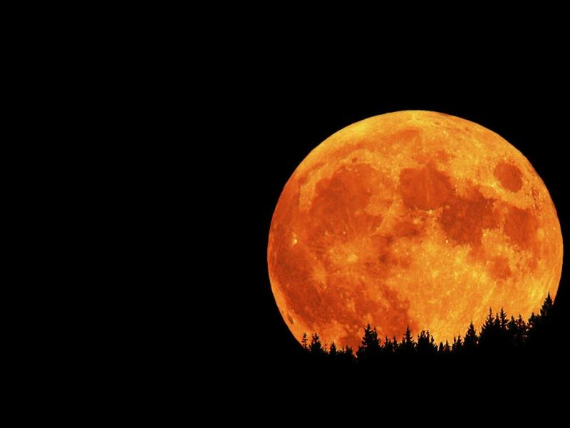 Full moon & lunar eclipse
